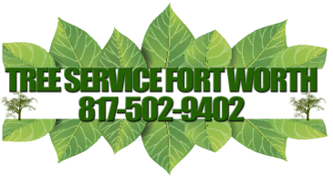 TREE SERVICE FORT WORTH | Tree Removal | Tree Trimming | Tree Disease